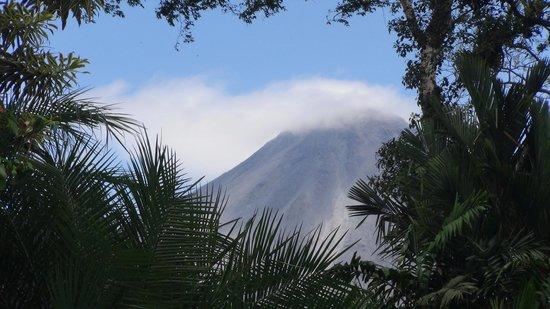 Tabacon Thermal Resort & Spa: volcano