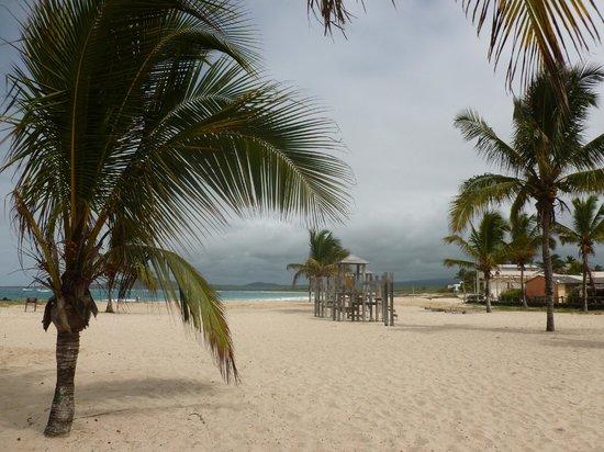 La Gran Tortuga: Playa Puerto Villamil.