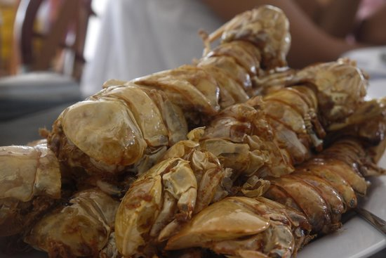 City Extra: udang botol/ bottle shrimp