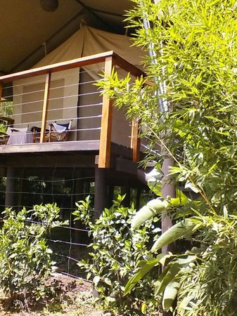 Wildebeest Eco Camp: Our home away from home in Nairobi