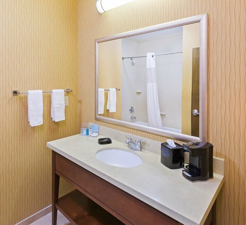 Hampton Inn Austin/Oak Hill : Guest bathroom