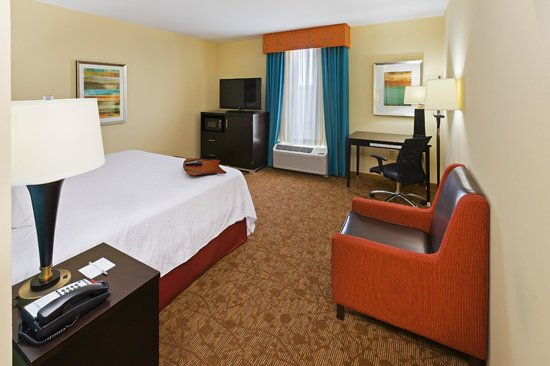 Hampton Inn Austin/Oak Hill : King room