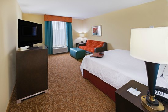 Hampton Inn Austin/Oak Hill: King bed room