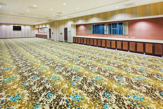 Hampton Inn Austin/Oak Hill: Meeting space