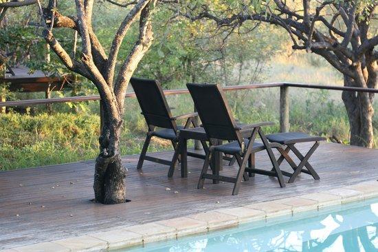 Toro Yaka Bush Lodge: Pool deck