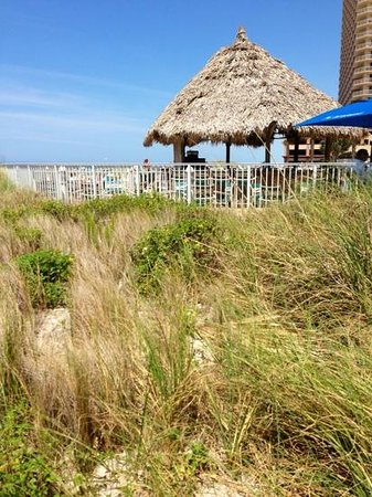Wyndham Vacation Resorts Panama City Beach: seagrass by the pool