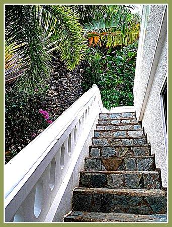 Argonauta Boracay: steps to our villa