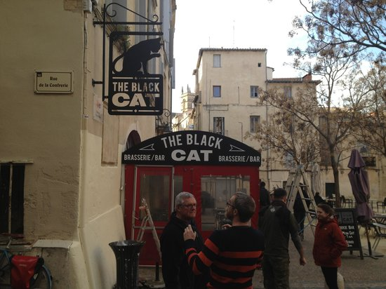 The black cat: getlstd_property_photo