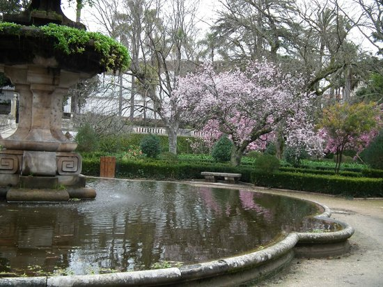 Pensao Residencial Antunes: University of Coimbra Botanic Garden