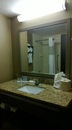 Hampton Inn Ft. Myers - Airport I-75: Bathroom