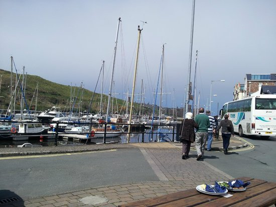 The Creek Inn: Quay and marina from outside
