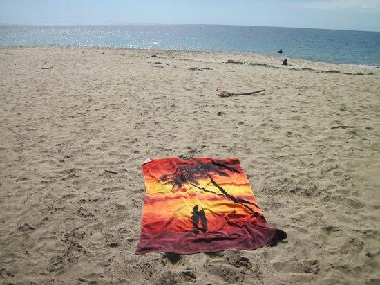 Les Calebassiers : plage Leroux