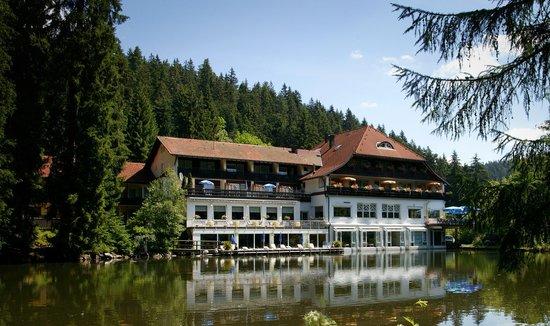 hotel langenwaldsee updated 2017 prices reviews freudenstadt germany tripadvisor. Black Bedroom Furniture Sets. Home Design Ideas