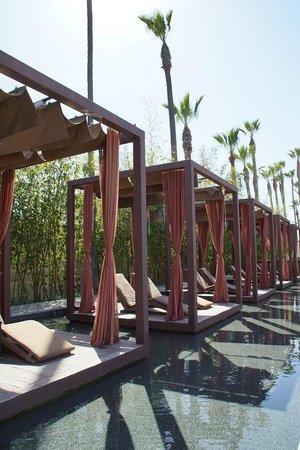 Hotel Maya - a DoubleTree by Hilton Hotel : La piscine