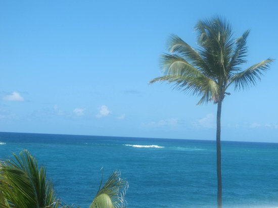 The Condado Plaza Hilton: Great Views of the ocean