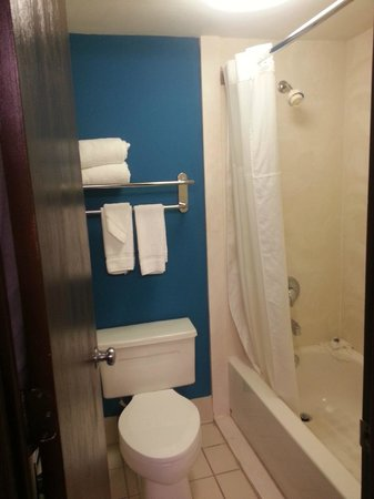 Quality Inn West End: Bathroom - small but clean.