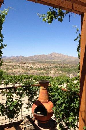Charron Vineyards & Winery: Relaxing and beautiful