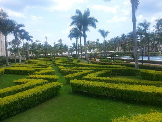 Hotel Riu Palace Punta Cana : Hermoso Jardin Principal