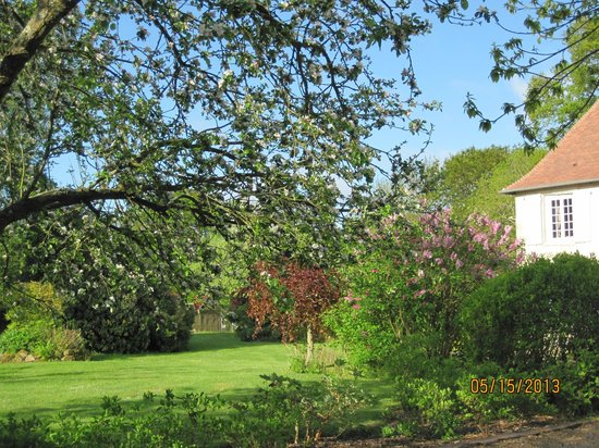 Domaine les Marronniers : Around the house