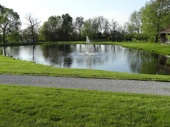 Spring View Bed & Breakfast: A paddle boat is available for navigating the pond