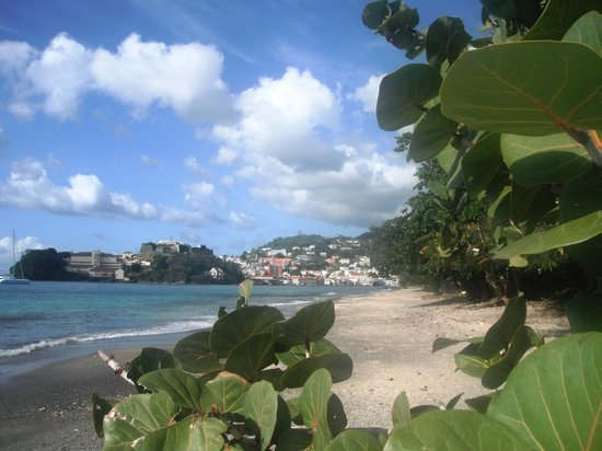 Caribbean Cottage Club: Mt Pandy beach view to St George