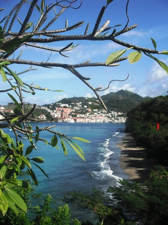 Caribbean Cottage Club: Mt Pandy beach