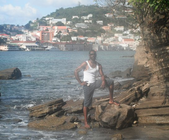 Caribbean Cottage Club : View of St George and Mt Pandy beach from Ross Point