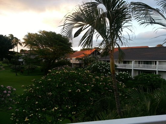 Kiahuna Plantation Resort: View looking toward Poipu Road from the balcony of our unit 48