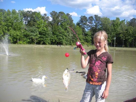 CarrollWoods RV Park & Grapefull Sisters Vineyard: Fishing Pond at CarrollWoods RV Park
