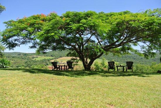 Abangane Guest Lodge: heerlijk om te chillen