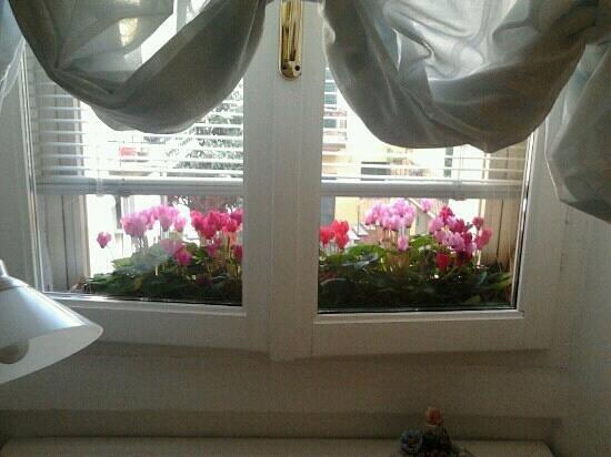 B&B A Casa di Luca: finestra