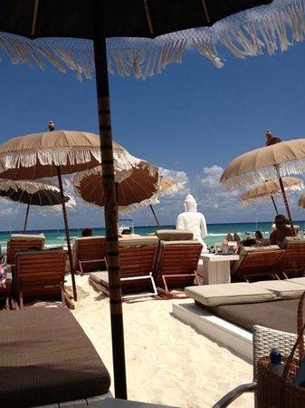 El Taj Oceanfront & Beachside Condos Hotel: Add a caption