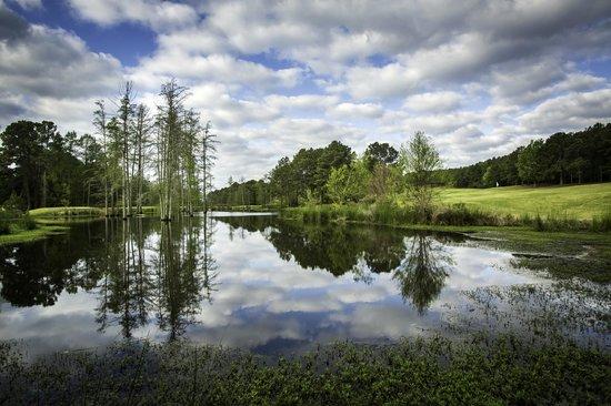Cypress Bend Golf Resort: Golf Course near hole #3