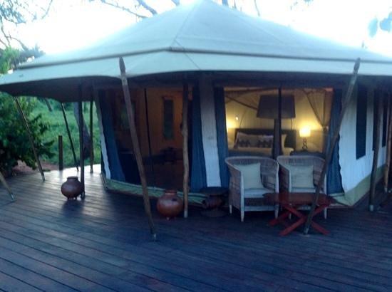 Sanctuary Swala: paradise
