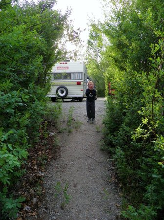 Haynes Point Provincial Park : trail leading to the lake from camp site 20
