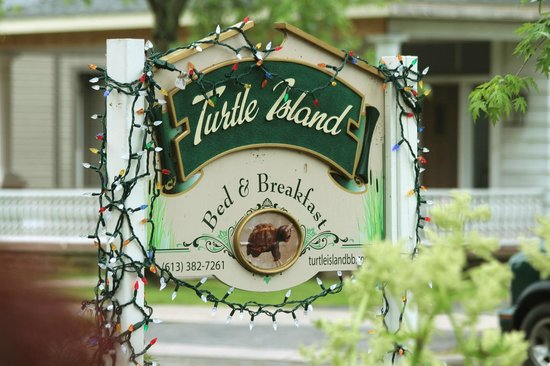 Turtle Island Bed and Breakfast: Vorgarten des B&B
