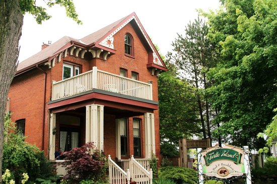 Turtle Island Bed and Breakfast : Eingang des B&B