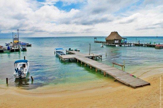 DC & Szana's Country Cabana: Amazing view to wake up each morning