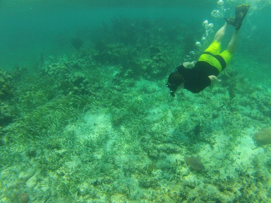 X'tan Ha Resort: Snorkeling at Mexico Rocks