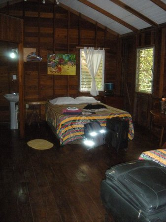 Jungle Jeanie's by the Sea : This was my room