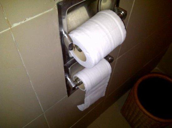 Maidens Hotel: Broken Toilet paper holders
