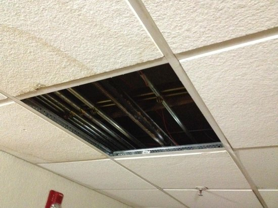 Days Inn Neptune Jacksonville Beach Mayport Mayo Clinic NE: Missing ceiling tiles