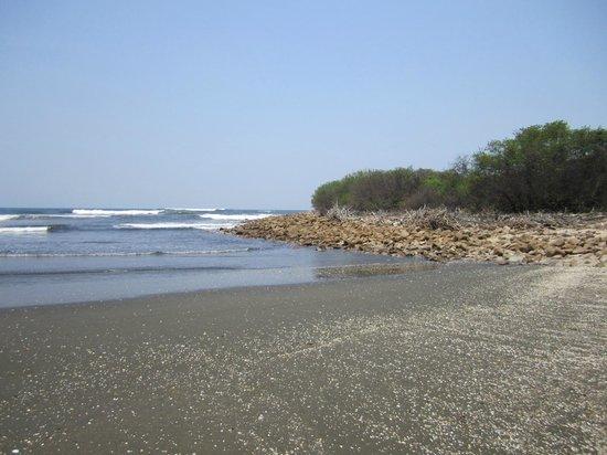 Marina Puesta del Sol: playa en la Isla
