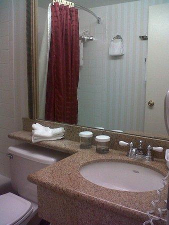 Georgetown Inn West End: Room 709: Bath, counter & shower