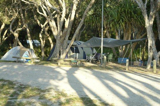 Straddie Camping: Adder Rock Camping Ground