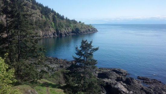 Snug Harbor Resort & Marina: View from Lime Kiln Park - San Juan Island, just south of Snug Harbor Resort