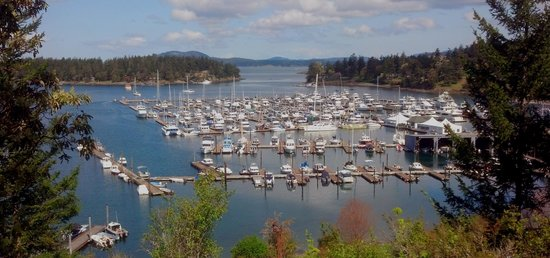 Snug Harbor Resort & Marina: Roche Harbor - a nice place to visit, but Snug is more our style