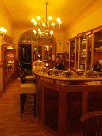 Hotel U Zlateho Jelena: La reception - Bar - Accettazione