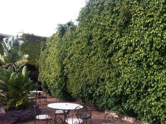 Hotel Swiss Moraira : Jardines