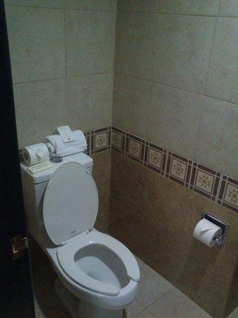 Hotel Villa Mercedes : wc